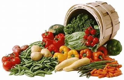 Vegetables Basket French Department Cigale