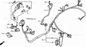 Honda Scooter 1990 Oem Parts Diagram For Wire Harness