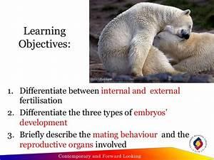 Ocw [animal reproduction]