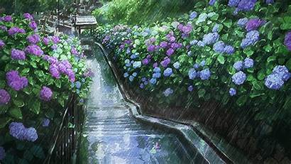 Rain Anime Scenery Rainy Background