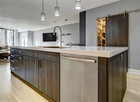 Sleek And Modern In Chicago  Kitchen Design Partners