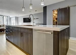 Sleek and modern in chicago kitchen design partners for Kitchen designer chicago
