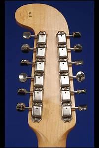Custom 12 String  Fred Stuart