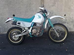 Honda Dominator 650 Fiche Technique : 1990 honda nx 650 dominator picture 2059052 ~ Medecine-chirurgie-esthetiques.com Avis de Voitures