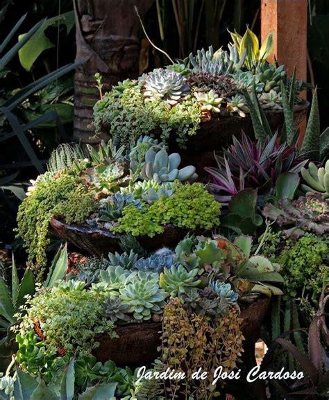 cascading succulent plants 1000 images about sukulentler ve 231 i 231 ekler on pinterest