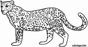 Dessin Jaguar Facile : coloriage dessin animaux leopard dessin ~ Maxctalentgroup.com Avis de Voitures