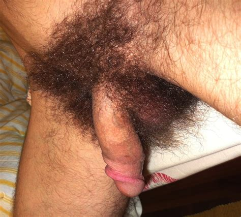 Tw20 In Gallery Extreme Hairy Cocks Picture 4