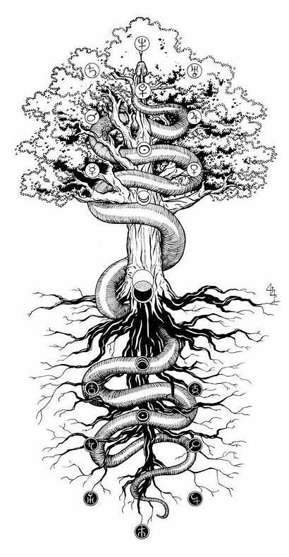 Tattoo Yggdrasil Below Above Tree Tattoos Kabbalah