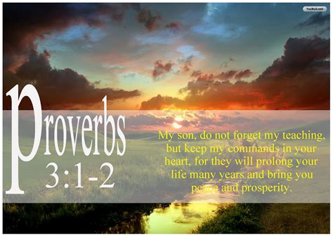 proverbs wallpaper  wallpapersafari