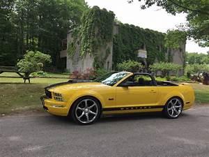 Wasaga Beach 2005 v6 yellow mustang convertible.   05 mustang, Mustang convertible, Yellow mustang