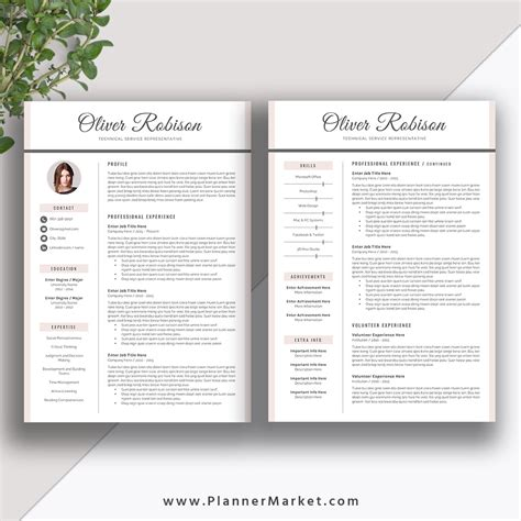 2 Page Resume Template by Professional Resume Template Cv Template 3 Page