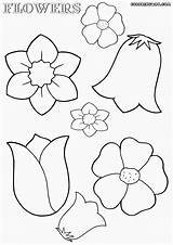 Coloring Flower Flowers Pages Nice Colorings Coloringway sketch template