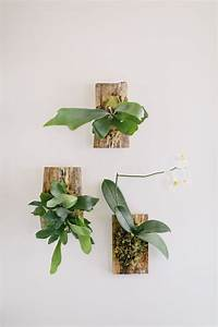 the 25 best wall mounted planters ideas on pinterest With kitchen cabinets lowes with air plant wall art