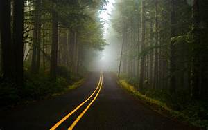 Fog, Forest, Road, Wallpapers, Hd, Desktop, And, Mobile