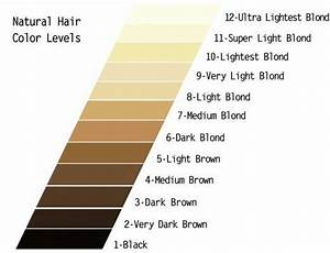 Underlying Pigment Chart Wella Diy Hair How To Use Wella Color Charm Toner Wella Color