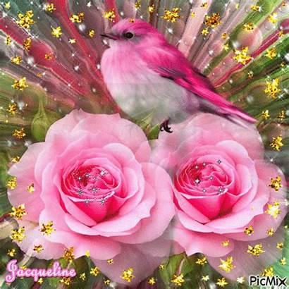 Flores Feliz Cumple Bonitas Rosas Picmix Roses