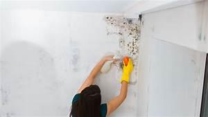 Probleme D Humidite Mur Interieur : comment lutter contre l humidit d un logement ~ Melissatoandfro.com Idées de Décoration