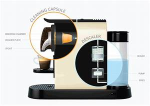 Bacteria  Yeast And Mould In Nespresso U00ae Coffee Machines