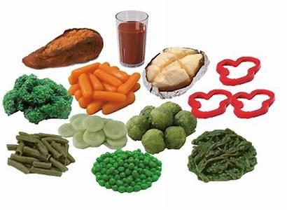 Foods Kit Vegetable Models Ncescatalog