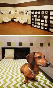 San diego dog boarding doggie daycare spa pooch hotel for Red dog daycare