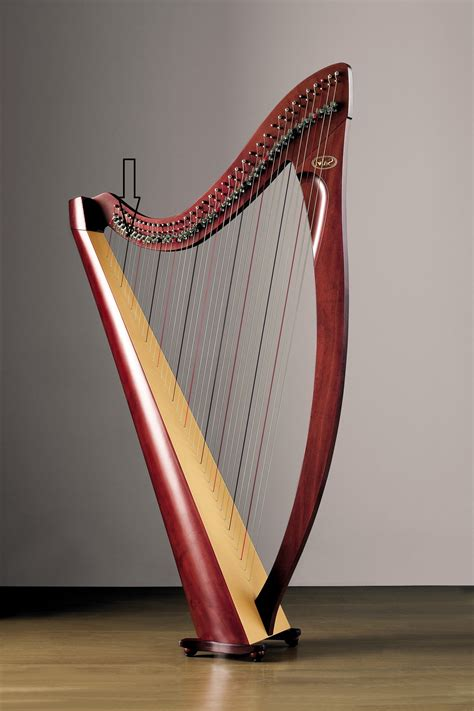what is a l harp rainbows and harps and heart energy ready for october