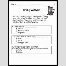 Nonfiction Reading Comprehension Passages Guided Reading Level E