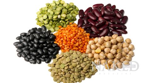 legumes cuisines legumes related keywords legumes keywords