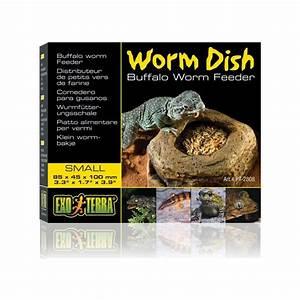 Exo Terra Worm Dish - Buffalo Worm