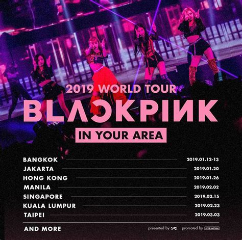 maroon 5 kuala lumpur 2019 ikon had fans tickled pink at their continue tour in