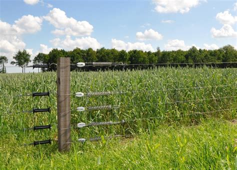 electric fence wire high tensile fence install roof fence futons high