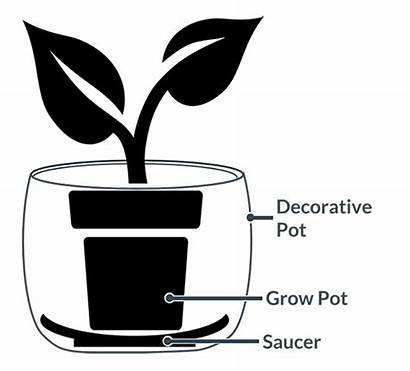 Pot Pots Planters Saucer Guide Planting Plant