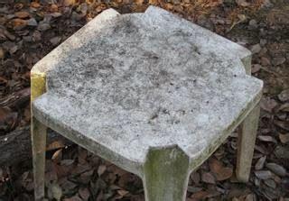 duradek    clean fungus  mold  duradek