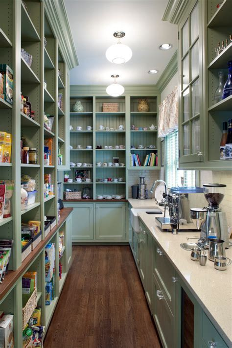 Amazing Pantry Designs by 47 Cool Kitchen Pantry Design Ideas Shelterness
