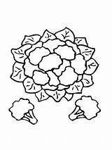 Cauliflower Coloring Pages Clipart Printable Vegetables Drawing Supercoloring Recommended Categories Colors sketch template
