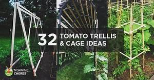 32 DIY Tomato Trellis & Cage Ideas for Healthy Tomatoes