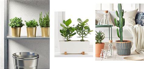 maceteros de ikea  vestir tus plantas de interior