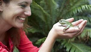 How To Compare A Frog And A Human Respiratory System