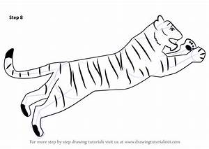 Learn How to Draw a Tiger for Kids (Big Cats) Step by Step ...