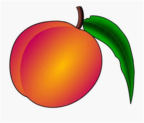 peach clipart logo     saurabh sharma