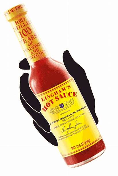 Lingham Sauce Warning Winning