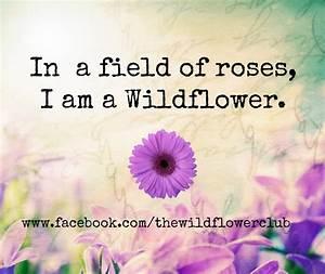 Wild Flower Quotes. QuotesGram