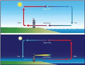Mr. Williams 6th Grade Science Blog: Convection