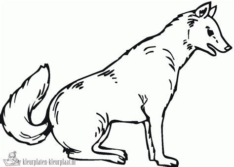 dessin de loup assis kleurplaten wolf kleurplaten kleurplaat nl
