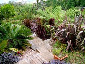 Three Mount Glorious Gardens Open This Weekend