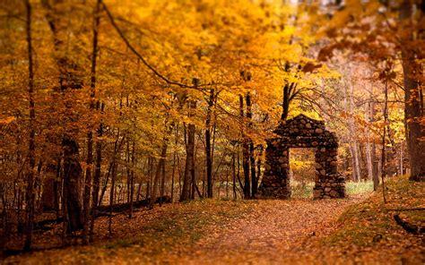Autumn Season Hd Wallpapers by Autumn Season Hd Wallpapers Wallpapers