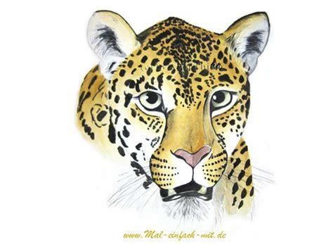 tiere zeichnen lernen raubkatzen mal einfach mit
