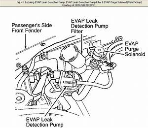 1999 Dodge Ram 1500 2wd V6  There Is A Small Canister On The Passenger Side Fender Under The