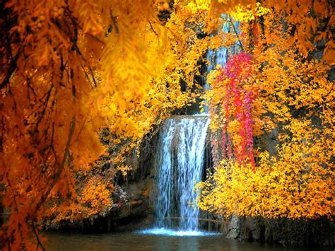 Free Animated Autumn Wallpaper - free fall screensavers and wallpaper free waterfall
