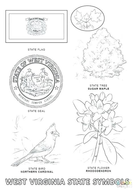 California State Symbols Coloring Pages State Symbols Coloring Pages