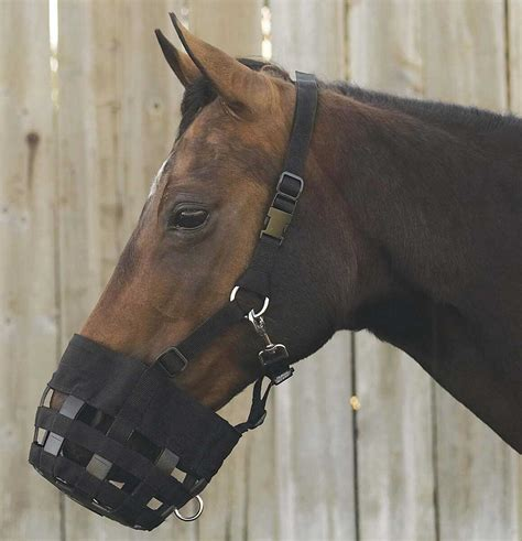 grazing muzzle horse deluxe friend sell larger flash non valleyvet